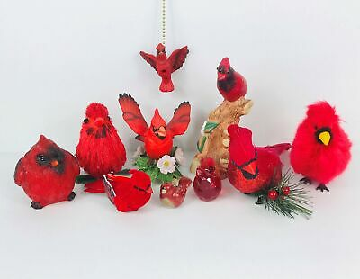 Red Cardinal Treasures
