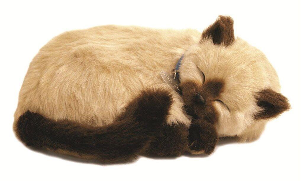Perfect Petzzz-l' originale di respirazione espansivi Sospensioni Pet-Tan Siamese