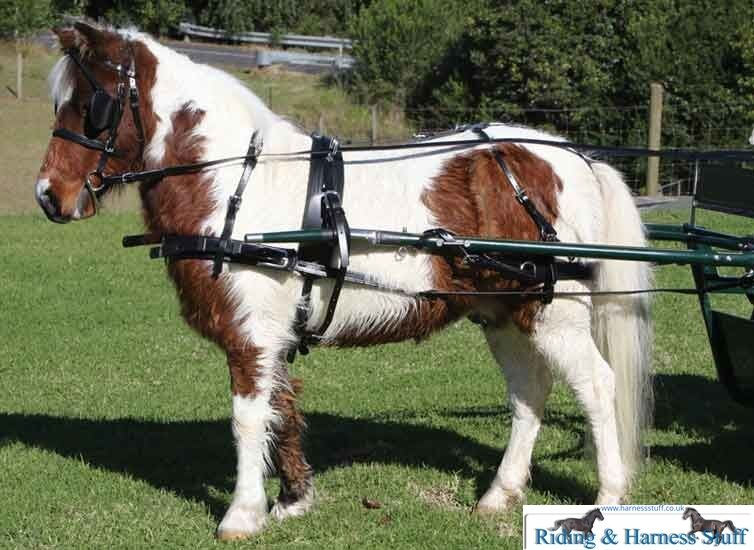 Zilco sl mini carriage driving harness set