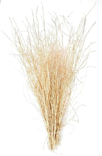 Decorative Birch twigs-Gold-90cm/'s-25stems