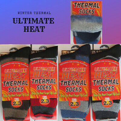 Begeistert 1 3 Pairs Mens Ultimate Heat Thermal Heat Trap Socks 2.3 Tog ( Striped ) 6 -11 Halten Sie Die Ganze Zeit Fit