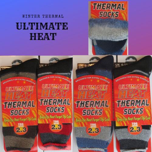 1 3 PAIRS MENS ULTIMATE HEAT THERMAL HEAT TRAP SOCKS 2.3 TOG STRIPED 6-11