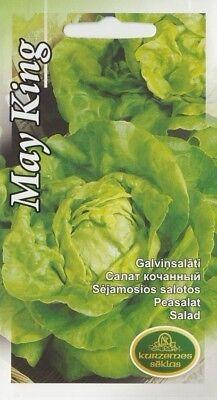 Lettuce Great Lakes Pictorial Packet Vegetable Kings Seeds