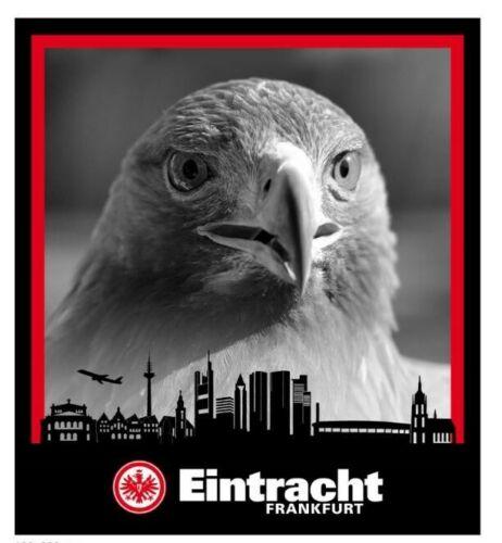 plus Lesezeic Decke SGE Kuscheldecke Eintracht Frankfurt Fleecedecke Skyline