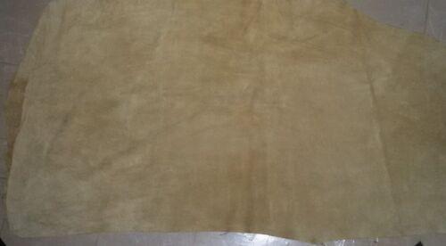Rindleder Blatt Wildleder Licht Creme Leder Mehr Als 2×2 Quadratisch Fuß
