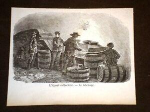 L-039-egout-collecteur-Le-Gachange-Vita-in-miniera-nel-1858