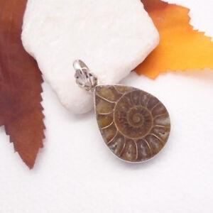 Ammonit-Fossil-Schnecke-braun-Amulett-Design-Anhaenger-925-Sterling-Silber-neu