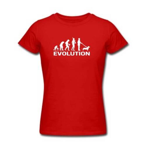 Ladies Evolution Of The DACHSHUND Tshirt Womens Sausage Dog T Shirt Clothing