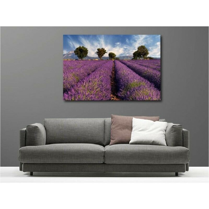 Canvas Fabric Deco Rectangle Fields of Lavender 5955640