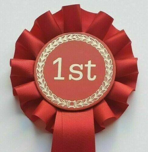 1st Place Rosettes x 10 Perfect for Horse Shows,Equestrian Dog shows,Any event