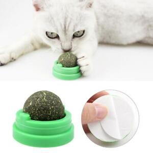 Pet-Cat-Toy-Natural-Catnip-Ball-Menthol-Flavor-Edible-Cats-Go-Crazy-Treats-2019