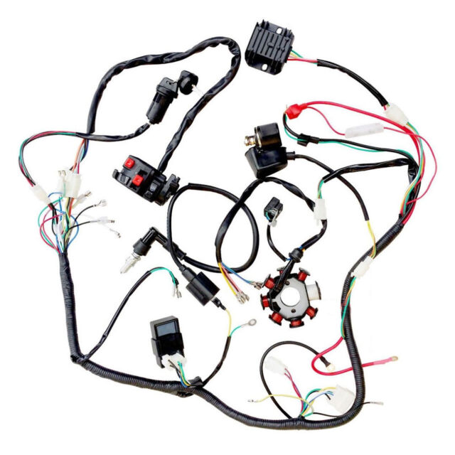 Cdi Coil Electrics Wiring Harness Atv Quad 200cc 250cc Bikes