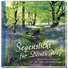 Segenslicht für deinen Weg von Susanne Schutkowski (2015, Gebundene Ausgabe)