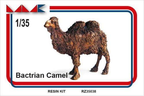MMK 1//35 Bactrian Camel