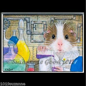 Guinea-Pig-ACEO-art-print-mounted-signed-from-original-painting-Suzanne-Le-Good