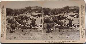 Cana-di-Galilea-Il-Pozzi-Gesu-Religion-Palestina-Fotografia-Stereo-Vintage