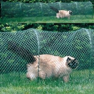 KittyWalk-Lawn-Version-Outdoor-Outside-Cat-Enclosure-Enclosed-Play-Pen-Tunnel