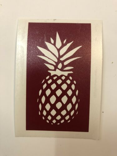 Henna Tattoos /& FREE GIFT!!! Glitter Pineapple Stencil for Airbrush