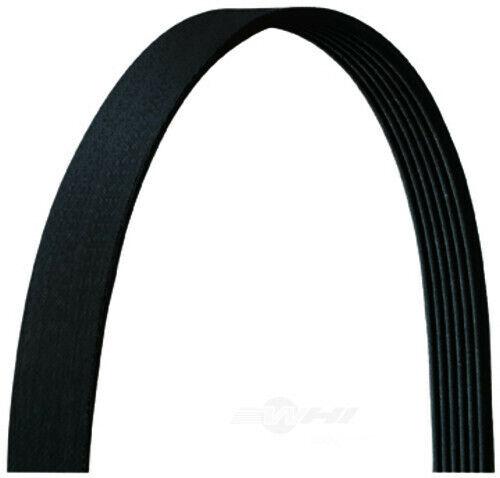 Serpentine Belt   Dayco   6PVK1650