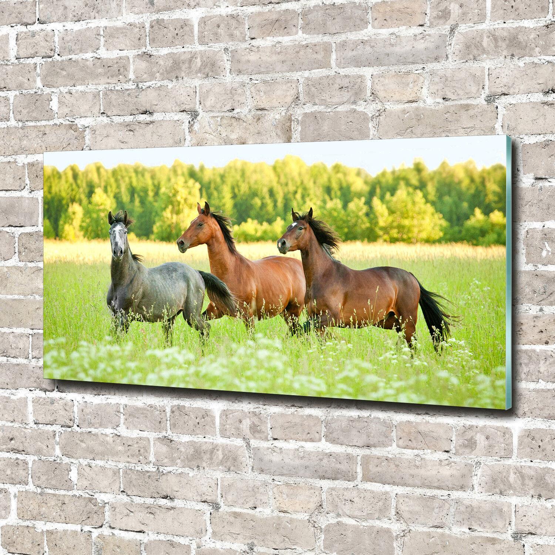 Glas-Bild Wandbilder Druck auf Glas 140x70 Deko Tiere Pferde im Galopp