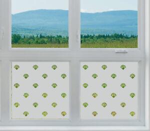 geätztes Glas Fenster Folie Matt Muscheln Badezimmer Geschäft am ...