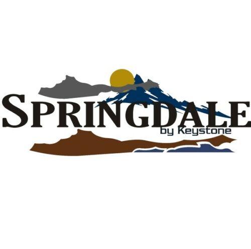 Springdale by Keystone RV TRAILER DECAL Sticker Emblem Mountains Set Kit FULL