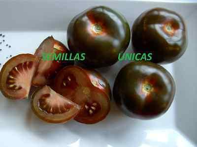 TOMATE NEGRO black tomato GIGANTE  60 Semillas Seeds