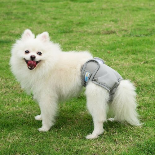 Reusable Washable Dog Diapers 3 Pack Dog Wraps for both Male and Female Dogs