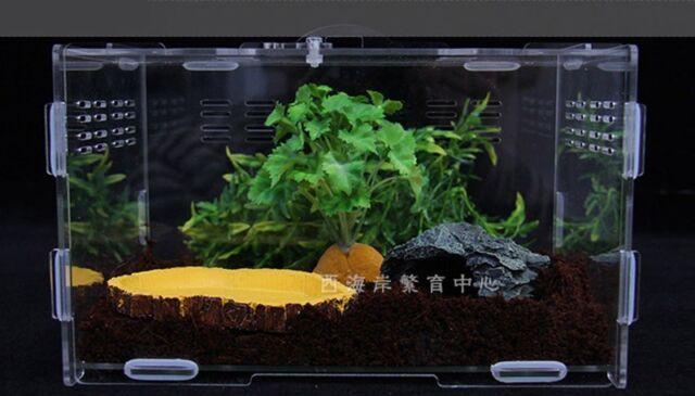 PMMA/Acrylic DIY 7 Size Terrestrial Acrylic Reptile Terrarium Geico Snake Frog
