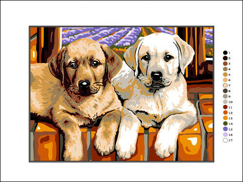 Needlepoint Kit Labradors 9x12in 23x30cm Printed Canvas cod K19