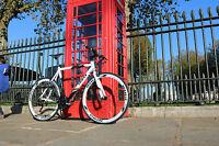 Teman Hybrid Bike Racing Bike Road Bike Bicycles Bicycle- Shimano 21 Speed C2