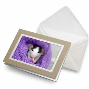 Greetings-Card-Biege-Fluffy-Pet-Rat-Mouse-Rodent-Eating-21796