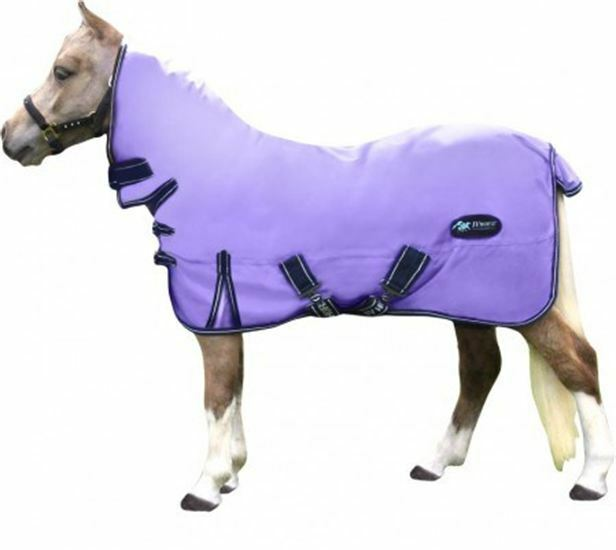 IV Horse Combinato Collo 200 G Riempimento Tappeto Affluenza tuttie Urne