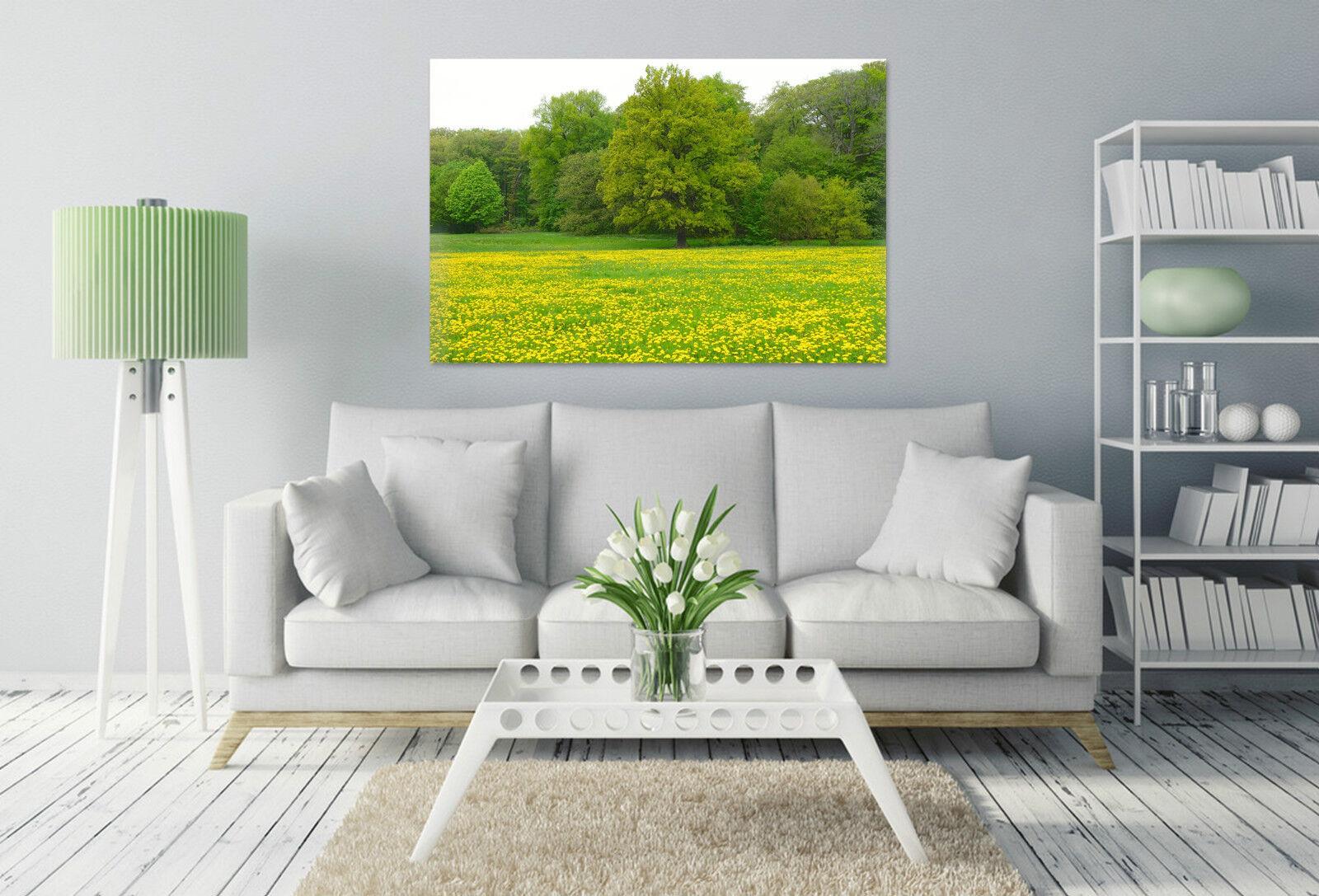 3D Grne Bume, Laub 366 Fototapeten Wandbild BildTapete Familie AJSTORE DE