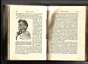 CLINICAL-EXPERIENCES-on-GENERAL-DISEASES-Freeman-amp-Wallace-ELECTRO-MEDICAL-Inst