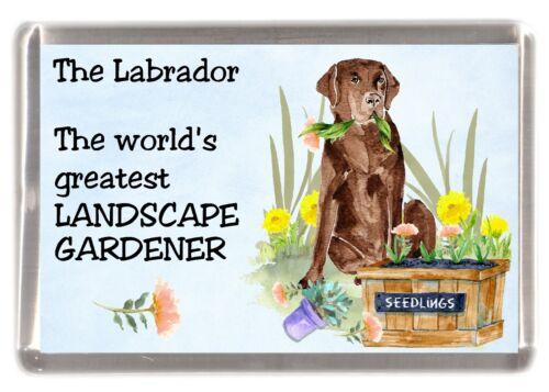 "Dog Fridge Magnet /""Greatest Landscape Gardener/"" Chocolate Starprint Labrador"