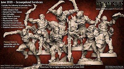 Scourgeland Survivor D Dungeons and Dragons DnD D/&D Mini Post Apocalyptic