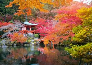 Amazing-Japanese-Garden-Poster-Print-Size-A4-A3-Japan-Nature-Poster-Gift-8830