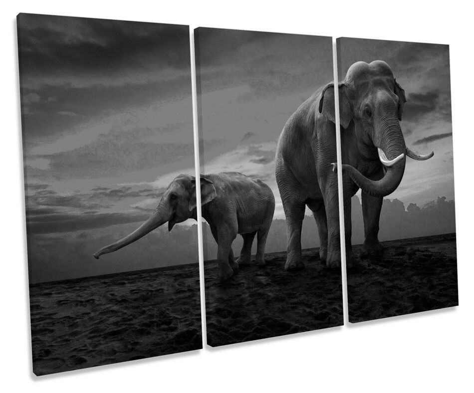 Elephants Sunset Africa Africa Africa Safari B&W TREBLE CANVAS WALL ART Box Framed Picture d9a16f