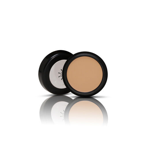 MISSHA The style Perfect Concealer - #2 Natural Beige / Made in Korea
