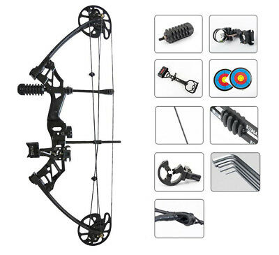 Arrow Rest SAS Rex 55Lb Hunting Compound Bow Package w// Bow Sight Quiver Bag