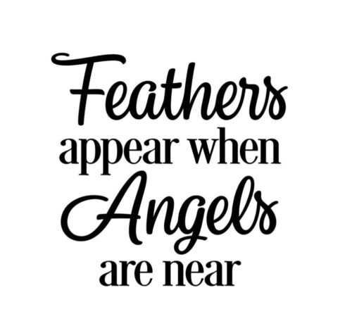 feathers appear when angels are near x8 vinyl bauble decals stickers