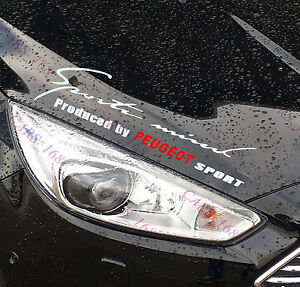 New-Headlight-Eyebrow-Car-Stickers-Decals-Graphics-Vinyl-For-Peugeot-white