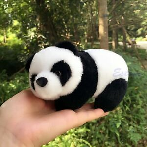 Image Is Loading NEW 16cm 6 034 Cute Panda Bear Plush