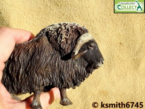NEW CollectA MUSK OX solid plastic toy wild zoo Arctic animal oxen