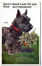 SCOTTISH TERRIER OLD DOG POSTCARD WITH NOVELTY PULL OUT PHOTOS OF ROTTINGDEAN
