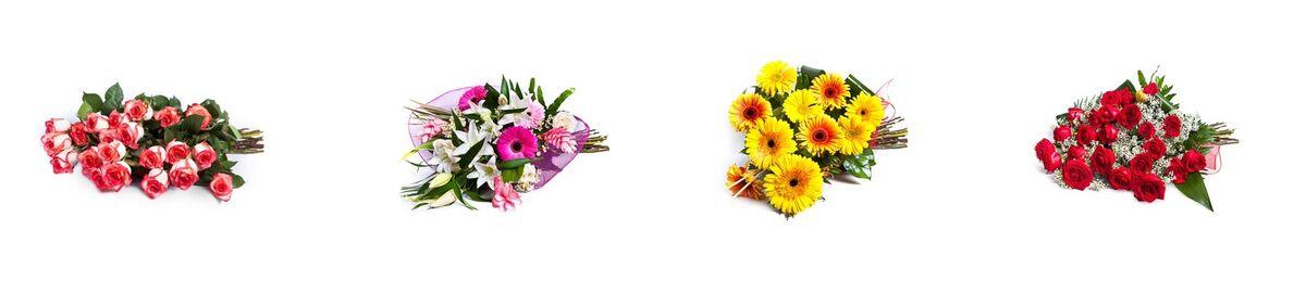 olaflowers