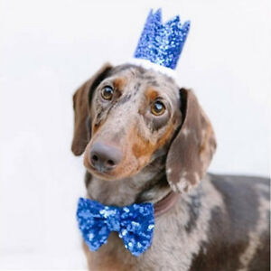 Image Is Loading Crown Amp Bow Tie Dog Birthday Hat Pet