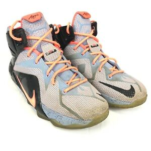 uk availability 3634a 82d43 Image is loading Nike-LeBRON-XII-12-EASTER-GS-Basketball-Sunset-