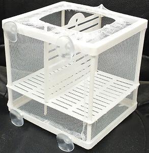 Aquarium-Fish-Tank-Guppy-Breeding-Breeder-Baby-Fry-Net-Trap-Box-Hatchery-BN-1